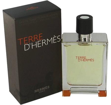 Picture of Terre D'Hermes 100ml EDt for Men